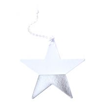 Ginger Ray etiketter Silver Dipped Star, 6 stk.